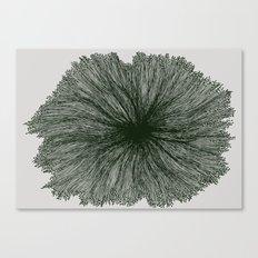 Jellyfish Flower B Canvas Print
