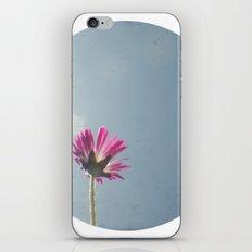 Pink flower circle print iPhone & iPod Skin