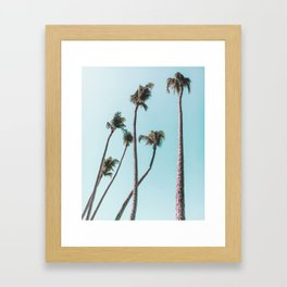 costa rica palms Framed Art Print