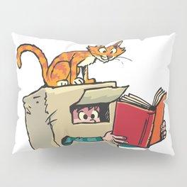 Boy in Box Pillow Sham