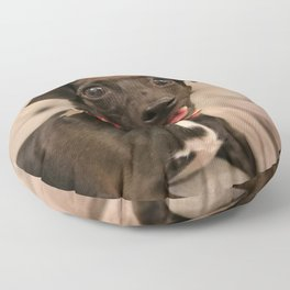 Black Jack Russell / Chihuahua Floor Pillow