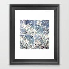 almond mediterranean tree flowers collage Framed Art Print