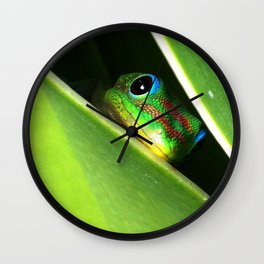 Eyes in the Grass Wall Clock