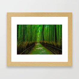 Bamboo Trail Framed Art Print