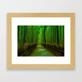 Bamboo Trail Framed Art Print