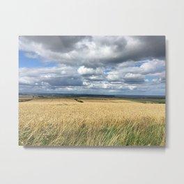Fields of Ripe Wheat, Fife, Scotland Metal Print