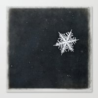 snowflake Canvas Prints featuring snowflake by Bonnie Jakobsen-Martin