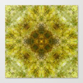 Between Moss and Summer Canvas Print