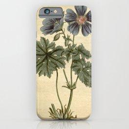 Flower 1386 geranium ibericum Iberian Geranium10 iPhone Case
