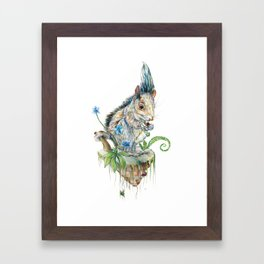 Squirrel Island Framed Art Print