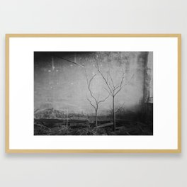 Out of the light of the sun Framed Art Print