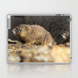 Two Marmots At Smith Rock Laptop & iPad Skin