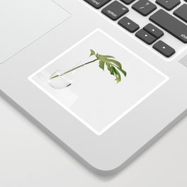 Single Monstera Leaf In Clear Glass Zen Minimalist House Plant Photo Sticker