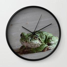 Smirking Grey Tree Frog Wall Clock