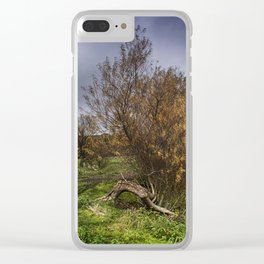 Sheep At Postling Clear iPhone Case
