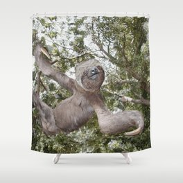 Sloth, A Real Tree Hugger Shower Curtain