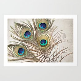 Exquisite Renewal Art Print