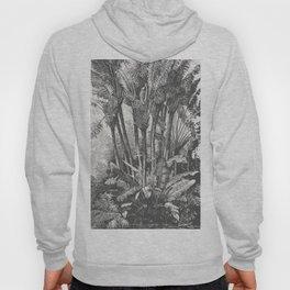 Palms in Water Hoody
