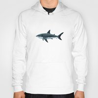 biology Hoodies featuring Carcharodon carcharias  ~ Great White Shark by Amber Marine