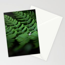 Fern #1 Stationery Cards