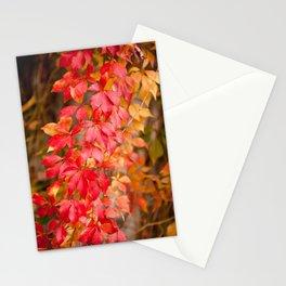 Vitaceae family red plant Parthenocissus quinquefolia vine Stationery Cards