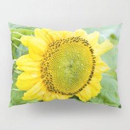 Teddy Bear Sunflower Bloom Pillow Sham