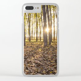 Sunbeams between tree trunks in a forest in autumn Clear iPhone Case