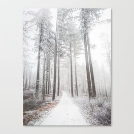 Mysterious road in a frozen foggy forest Canvas Print