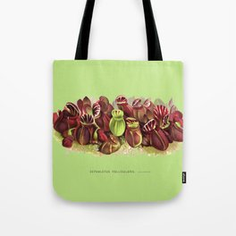 Cephalotus Follicularis (Albany Pitcher Plant)  Tote Bag