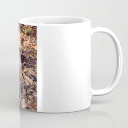 Shaggy Parasol 2 Coffee Mug