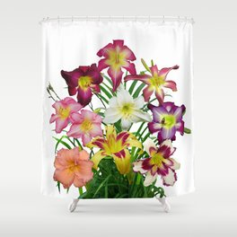 Celebration of daylilies II, Hemerocallis flowers Shower Curtain