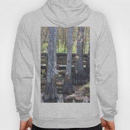 Cypress Trees Hoody