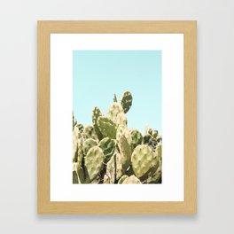 Cactus Summer Framed Art Print