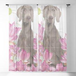 Weimaraner Lotos Flowers Sheer Curtain