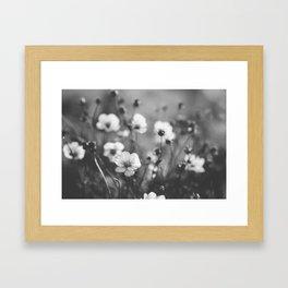 black and white cosmos Framed Art Print