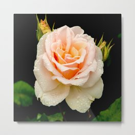 Johann Strauss Rose Metal Print