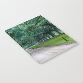 Tangled Trees Notebook