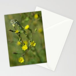 Golden flowers by the lake 2 Stationery Cards