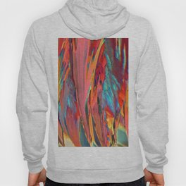 Abstracts in Color No 6, 2019 Hoody