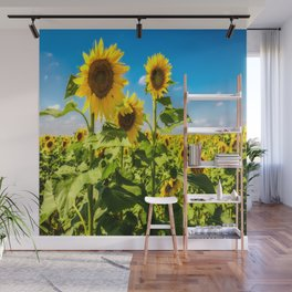 Three's Company - Trio of Sunflowers in Kansas Wall Mural