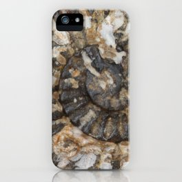 Trilobite Fossil Donegal iPhone Case