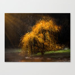 Dancing Sprites Canvas Print