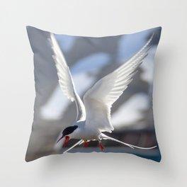 Tern's shriek Throw Pillow