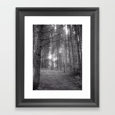 Forest Black and White Framed Art Print