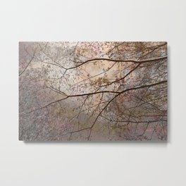Spring Branches Overhead photo art by Ann Powell Metal Print