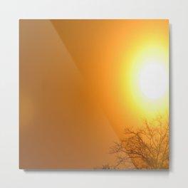 Sunshine Glow 1 Metal Print