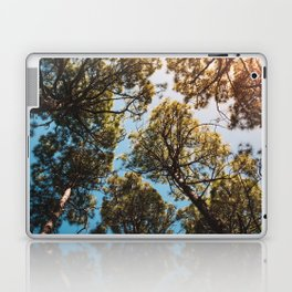 Trees and sky in sunlight- forest landscape - nature photography Laptop & iPad Skin