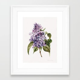 Lilac Branch Framed Art Print
