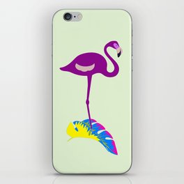 Flamingo and colors iPhone Skin