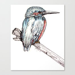 The Kingfisher Canvas Print